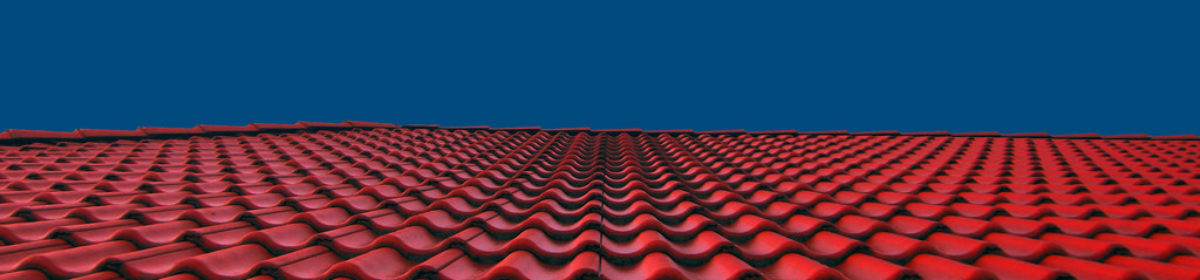 All Spec Roof Corp